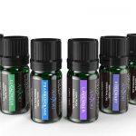 12 aceites esenciales puros ANJOU comprar barato baratos precio precios barata baratas online oferta ofertas