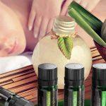 12 aceites esenciales puros ANJOU para masaje y relajación barato baratos precio precios comprar oferta ofertas online