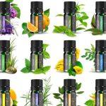 Kit terapéutico de 12 aceites esenciales puros ANJOU set baratos baratas barato barata comprar precio precios online